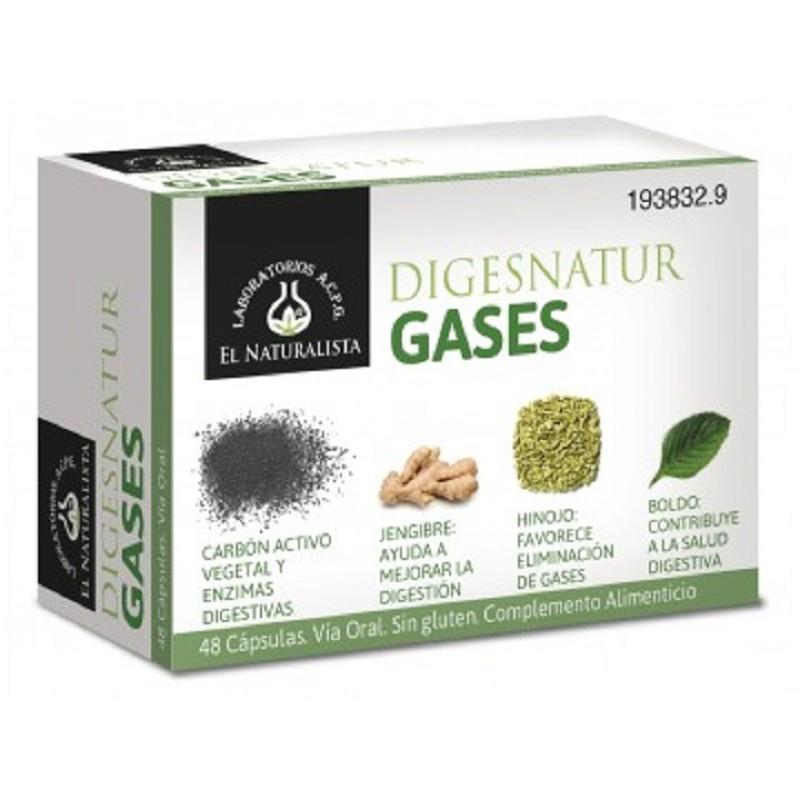 digesnatur gases