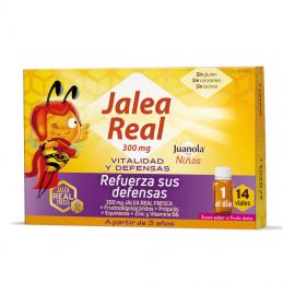 JALEA REAL VITALIDAD Y...